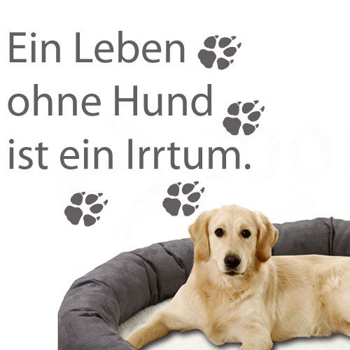 wandtattoo ein leben ohne hund ist ein irtum crazy art connection. Black Bedroom Furniture Sets. Home Design Ideas